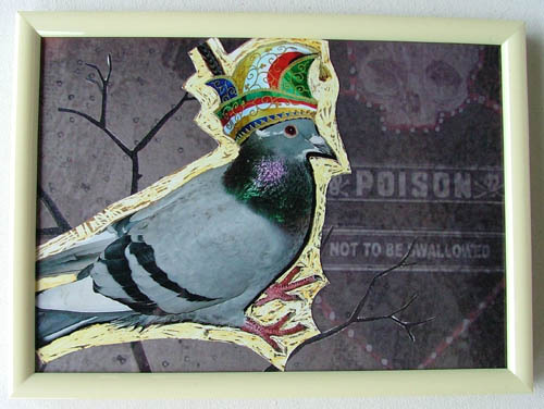 PigeonFull