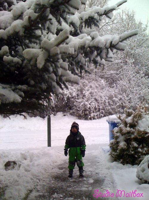 SnowyOchsy